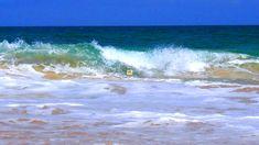 Wassersport auf Boa Vista, auf jeden Fall. Ein inzwischen sehr beliebtes Reiseziel bei Wassersportlern, ist die kapverdische Insel geworden. Surfer, Kitesurfer und Tauchsportler erkennen die Qualität der Insel und haben richtig Spaß. Längst ist Boa Vista raus aus dem Geheimtipp-Status und immer mehr Wassersportbegeisterte nutzen die kurze Flugdauer und Beständigkeit des Klimas um ihrem Hobby nachzugehen. Auch Fotografen kommen dabei nicht zu kurz.  #boavista #kapverden #capeverde…