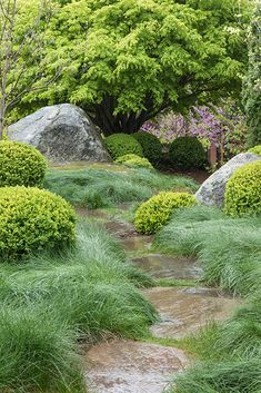 When Peter Blum and his wife, Rita, had a modern house built in Irvington, New York, they hired a landscape architect to turn the existing grounds into an Japanese Garden Landscape, Japanese Garden Design, Garden Landscape Design, Landscape Architecture, Japan Garden, Woodland Garden, Exterior, Natural Garden, Front Yard Landscaping