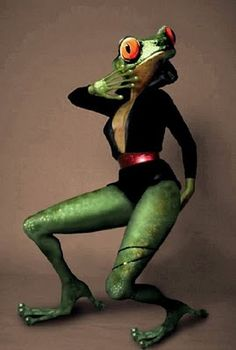 Funny-Frog-Stylish