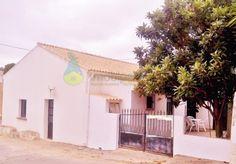 Maison T3 - Boliqueime