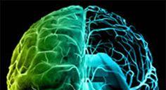Las alteraciones producidas por el alzhéimer en el cerebro ocurren hasta 20 años antes de los primeros síntomas