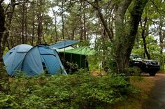 Dune's Edge Campground – Provincetown | Best Campgrounds in Massachusetts | Where to Camp in the Bay State