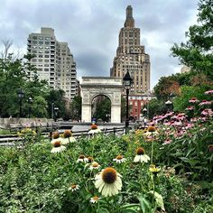 Washington Square Park... 24°C / 75°F #nyctips #newyork #newyorkcity #nyc #lovenyc #bestcify #bigapple #summer #washingtonsquarepark #enjoyny - http://washingtonsquareparkerz.com/washington-square-park-24c-75f-nyctips-newyork-newyorkcity-nyc-lovenyc-bestcify-bigapple-summer-washingtonsquarepark-enjoyny/