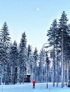 Some Of My Favorite 2016 Travel Experiences (So Far) Finland Travel, Sweden Travel, Norway Travel, Travel Europe, European Travel, Helsinki, Finland Destinations, Winter Travel, Wanderlust Travel