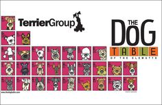 The Terrier Group Poster of The Dog Table of the EleMUTTs features illustrations of the American Kennel Club dog breeds in the Terrier Group. From the Airedale Terrier to Miniature Schnauzer to the Wi Airedale Terrier, Terrier Dogs, Rat Terriers, Horses And Dogs, Dogs And Puppies, Doggies, Dog Table, American Dog, Dog Information