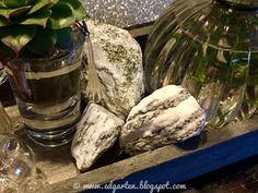Reise durch den Advent - Deko Nutribullet, Kitchen Appliances, Mugs, Tableware, Hammer And Chisel, Small Glass Vases, Soap Bubbles, Potted Plants, Voyage