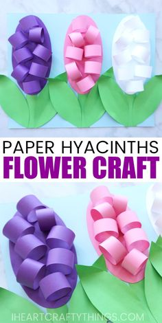 Learn how to make these beautiful paper Hyacinth flowers for a fun spring craft. The petals and leaves pop off the page giving the craft an awesome 3D effect. Find more fun spring flower crafts on our website too like tulip crafts, hyacinth crafts and cupcake liner flowers. #hyacinths #flowercrafts #flowercraft #papercraft #papercrafting #springcrafts #mothersdaygift #iheartcraftythings