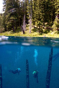 Clear lake - Oregon (by frenchy912)
