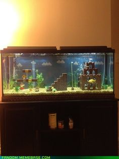Haha...Mario aquarium. Ethan would think I was the coolest if I did this;)