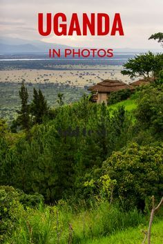 Top 10 Things to Do in Kampala, Uganda. Things to see in Kampala. Where to stay in Kampala. Traveling in Uganda. Backpacking in Africa. Uganda Travel, Africa Travel, Beautiful Places To Visit, Cool Places To Visit, Amazing Places, Honduras, Bolivia, Jamaica, Travel Photographie