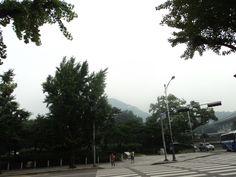 【庆州路上】 서울