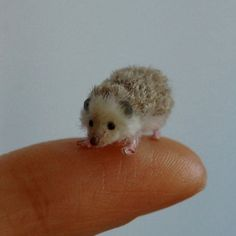 designstack:  Hedgehog.Miniature Animal Sculptures that fit on your Hand. For more Art and information about ReveMiniatures press the image or press here=> http://bit.ly/1JvcmJr