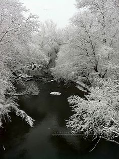 ~ Creek in Winter Snow Scene ~