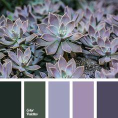 Color Palette #3211