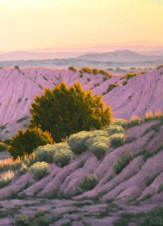 Beautiful New Mexico in the morning light--original oil painting http://terrysauve.com/available-painting/