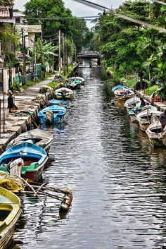 Dutch canal in Negombo, Sri Lanka. #VisitSriLanka