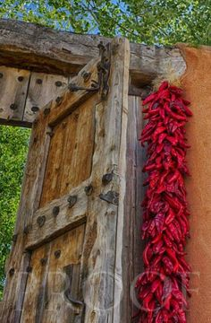 "A red chile ristra is a welcome sign ""Mi casa es su casa"" (my house is your house) - NM Southwestern Home, Southwest Decor, Southwest Style, New Mexico Style, New Mexico Homes, Old Doors, Windows And Doors, Tor Design, Santa Fe Style"