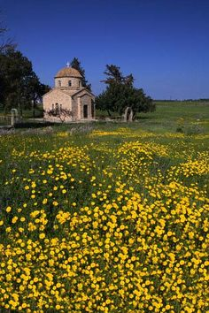 Srt Barnabas Monastery Salamis, N. Beautiful Islands, Beautiful Places, Akrotiri And Dhekelia, Cyprus Paphos, Cyprus Island, North Cyprus, Limassol, Church Architecture, Heaven On Earth