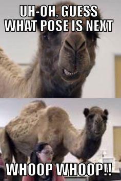 5eb6c4e028df2854c2088ab331c9e470 hot yoga funny stuff gumby or tinman come grab a class! yoga memes pinterest,Hot Yoga Meme