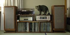 Tannoy Stirling / HE CD player: DENON DCD-S10III Record player: Pioneer PL70 Cartridge: Orthofon MC20S2 Integrated Amplifier: Luxman L507sII