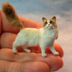 Kerri Pajutee is a masterful miniature animal artist. And you thought was that a tiny real cat, right? (Adding to prev pin: she is my fave miniaturist! Check out her website. Needle Felted Cat, Needle Felted Animals, Felt Animals, Miniture Animals, Dollhouse Dolls, Miniature Dolls, Dollhouse Miniatures, Felt Cat, Mini Things