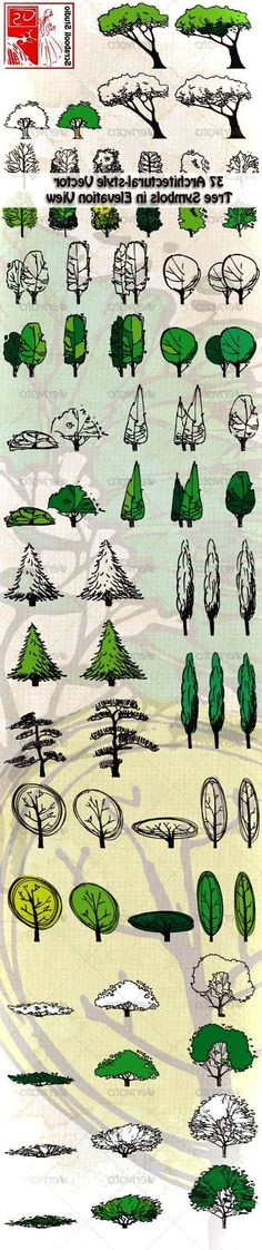 62 Ideas For Landscape Architecture Photoshop Ideas Landscape Sketch, Landscape Drawings, Architecture Drawings, Landscape Architecture, Landscape Design, Architecture Graphics, Tree Render, Planer Layout, Tree Sketches