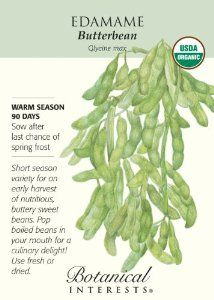 """Certified Organic Edamame """"Butterbean"""" Seeds by Botanical Interests. $3.49. Soybeans are easy to grow, highly nutritious and extremely tasty.. Soybeans are 40% protein so for vegetarians this is a wonderful source.. Glycine max. Wait to plant until your soil has warmed up and do start in the garden not inside as they resent being transplanted.. Plant some every few weeks for a longer harvest."""