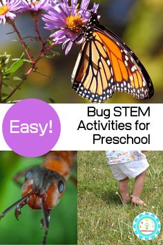 Learning about bugs? These insect STEM activities for kids teach kids the basics about bug anatomy, insect life cycles, and more all using STEM insect activities to boost science learning and education! Science Projects For Preschoolers, Science For Toddlers, Science Experiments For Preschoolers, Insect Activities, Preschool Activities, Preschool Printables, Science Center Preschool, Business For Kids, Bugs