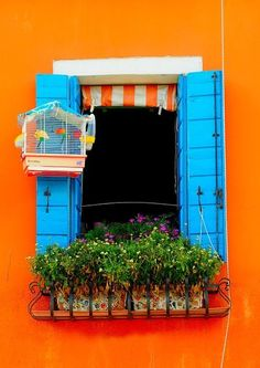 Italy!! Orange is gorgeous with a pop of bright turquoise!