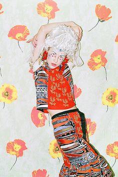 Synchrodogs shoot for New York magazine!, via Flickr.