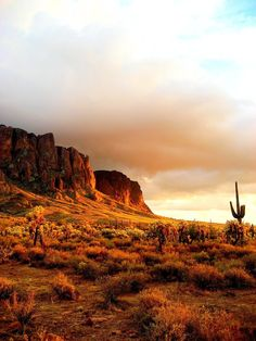 Goldfield - Superstition Mountains by Chad Wagner
