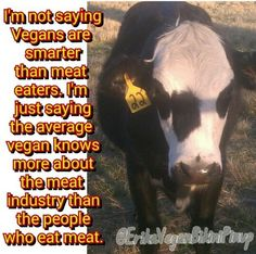 vegan: conscious Agriculture Business, Animal Agriculture, Factory Farming, Why Vegan, No Dairy Recipes, Animal Cruelty, Animal Welfare, Animal Rights, Going Vegan