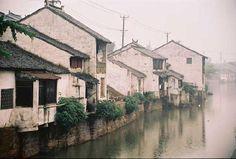TongLi, China 2010, 2011