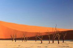Namib-Naukluftin kansallispuisto Namibiassa