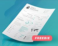 FREEBIE - #Infographic Resume/Cv #Template Volume 8 - #Adobe #Indesign / #Photoshop / #Microsoft #Word