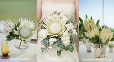 Doing a Protea wedding and doing it right! - Bella Wedding Flowers Blog