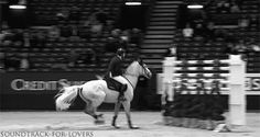 """eq-devotion: """" jinglebean: """" soundtrack-for-lovers: """" Martin Fuchs wins the Prix Ticketportal Six Bar competition at CHI-Geneva jumping a height of 206cm """" And then that sassy buck Gotta love horses...."""