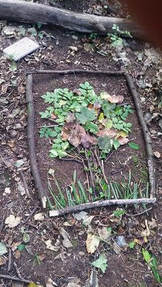Creating nature art in a stick frame - always guide your groups not to pick too . Creating nature art in a stick frame - always guide your groups not to pick too much - try and find things already loose. Art Et Nature, Deco Nature, Nature Prints, Forest School Activities, Nature Activities, Activities For Kids, Outdoor Education, Outdoor Learning, Land Art