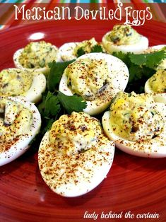 Take these Mexican Deviled Eggs to any party and watch them disappear! With wonderful flavors like jalapenos, cilantro and cumin. These Mexican Deviled E Egg Recipes, Mexican Food Recipes, Appetizer Recipes, Appetizers, Cooking Recipes, Healthy Recipes, Quiche Recipes, Asian Recipes, Quesadillas