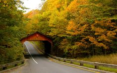 America\'s Best Fall Foliage Drives