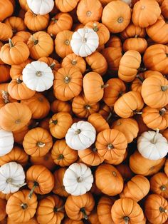 October Simplest Hokkaido Soup Recipe October Simplest Hokkaido Soup Recipe So She Glows sosheglows Foods If you love autumn as much as I do you nbsp hellip backgrounds aesthetic orange Orange Aesthetic, Autumn Aesthetic, Christmas Aesthetic, Phone Backgrounds, Wallpaper Backgrounds, Wallpaper Art, Wallpapers, Screen Wallpaper, Iphone Wallpaper Fall