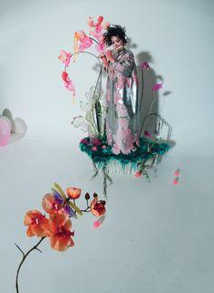 Björk Returns to Iceland by Tim Walker for W Magazine Tim Walker Photography, Tush Magazine, Magazine Editorial, Divas, Bjork, People Photography, Fashion Photography, Alfred Stieglitz, Mood