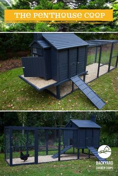 Why not treat your chickens to an egg-cellent and spacious Penthouse Coop. They deserve it! Find out more about our Penthouse Coop here, http://www.backyardchickencoops.com.au/chook-pens/the-penthouse/ #loveyourchickens #penthousecoop #chickencoops