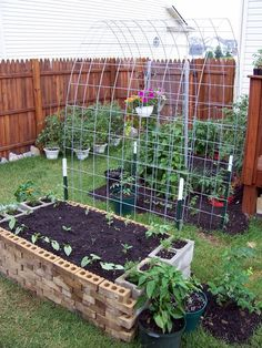 Cattle arch trellis & raised brick garden bed (cattle fence @ Tractor Supply)