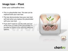 Support ecological topics with our Plant Image Icon for PowerPoint. Download now at http://www.charteo.com/en/PowerPoint/Backgrounds-Images/Photo-Icons/Image-Icon-Plant-PowerPoint.html