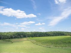 Virginia Wine Country  #virginia #nature #outdoors #landscape #wine #winery