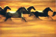 - Ernst Haas photographer