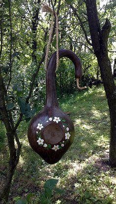 zlx / vtáčia búdka kvetinková Gourd Crafts, Gourds Birdhouse, Bird Houses, Birdhouses, Nesting Boxes