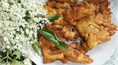 Smažená květenství bezu - kosmatice | Chrudimka.cz Chicken, Meat, Food, Essen, Yemek, Buffalo Chicken, Cubs, Meals, Rooster