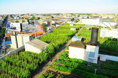 Brooklyn Grange – http://inhabitat.com/nyc/brooklyn-grange-worlds-largest-rooftop-farm-kicks-off-second-growing-season/